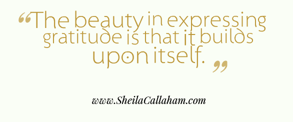 Quote by Author Sheila Callaham